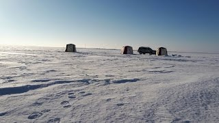 Зимняя рыбалка 2017  БАЛХАШ