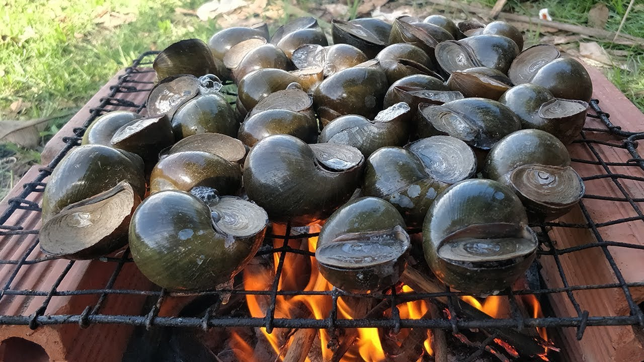 RIVER SNAIL !! Snail Grilling Recipe | Grilled Snail with Yummy Ingredient