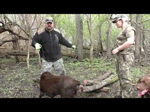 Bushcrafting with Emy  - Plus Odepro Giveaway Winners