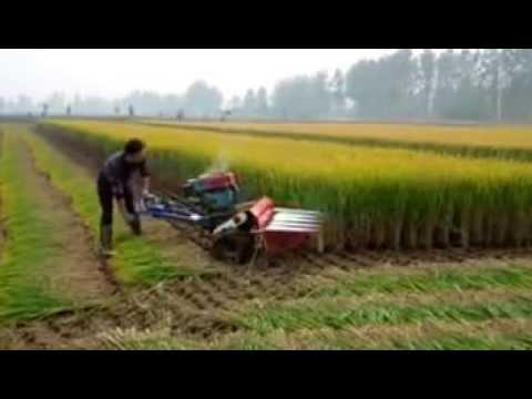 Rice Reaper, Wheat Reaper, Rice Reaper India, Rice Cutting Machine
