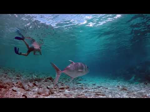 Cocos Keeling Islands Part 2