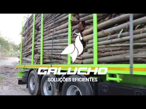 SGE-M Madeireiro / SGE-M Wood and Wood Product carrier
