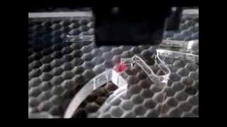 Лазерная гравировка в Нижнем Тагиле(, 2014-04-12T16:13:04.000Z)