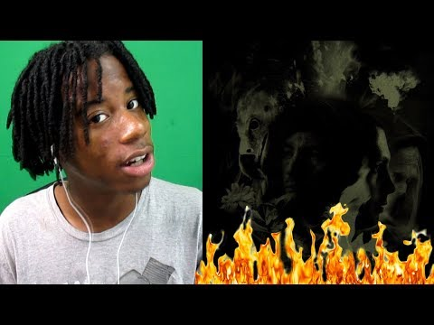 ANOTHER ONE! | twenty one pilots: Morph [Official Audio] | REACTION