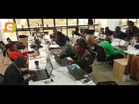 Savvy IT lovers making a living by crating technology solutions
