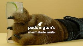 Paddington's Marmalade Mule