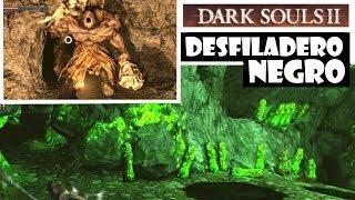 Gambar cover Dark Souls 2 guia: DESFILADERO NEGRO | Gigantes, llave olvidada y pacto peregrinos oscuridad | Ep.41
