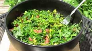 The Harvest & Preparation: Olive Oil & Red Wine Vinegar Kale Flower, Bud & Leaf Garden Salad