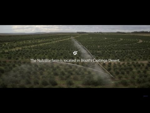 The Largest Acerola Organic Farm in the World | Amway