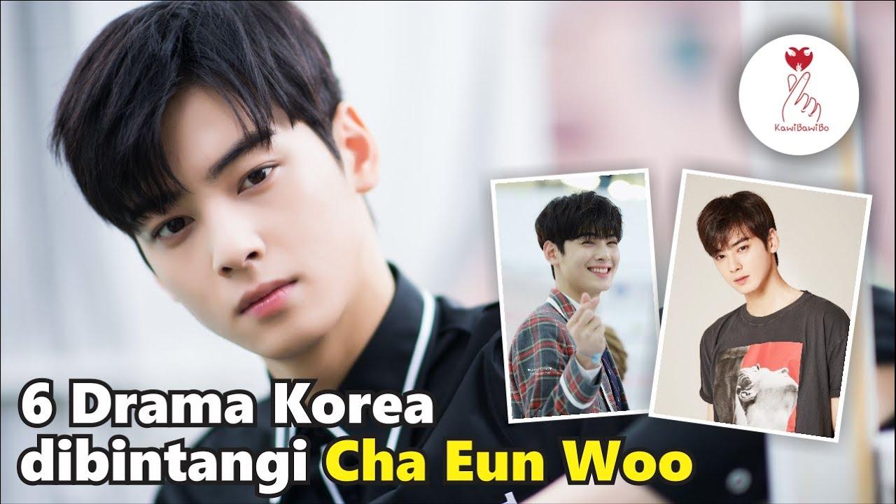 Download 6 Drama Korea Terbaik Cha Eun Woo