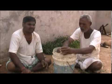 Neem leaves and cattle urine mix pesticide preparation Kannada BAIF Karnataka