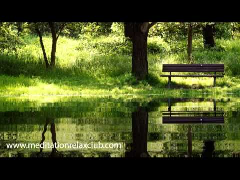 Buddhist Meditation Music: Harmony, Sleep Music, Peace, Relaxation and Serenity