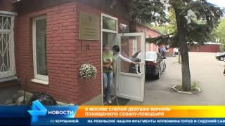 Похитившей у слепой москвички собаку поводыря оказалась уроженка Казахстана