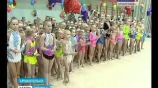 Почти две сотни юных гимнасток из разных городов России приехали в Архангельск(Почти две сотни юных гимнасток из Москвы, Красногорска, Череповца, Вологды, Мирного и Северодвинска приехал..., 2014-02-11T14:43:07.000Z)
