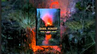 DARK FOREST, edited by Robert Dunbar