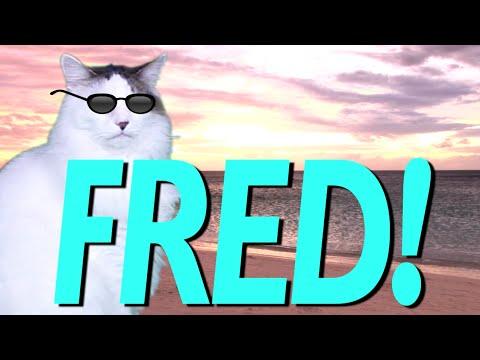 Happy Birthday Fred Epic Cat Happy Birthday Song Youtube