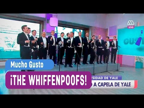 The whiffenpoofs - Mucho Gusto 2017