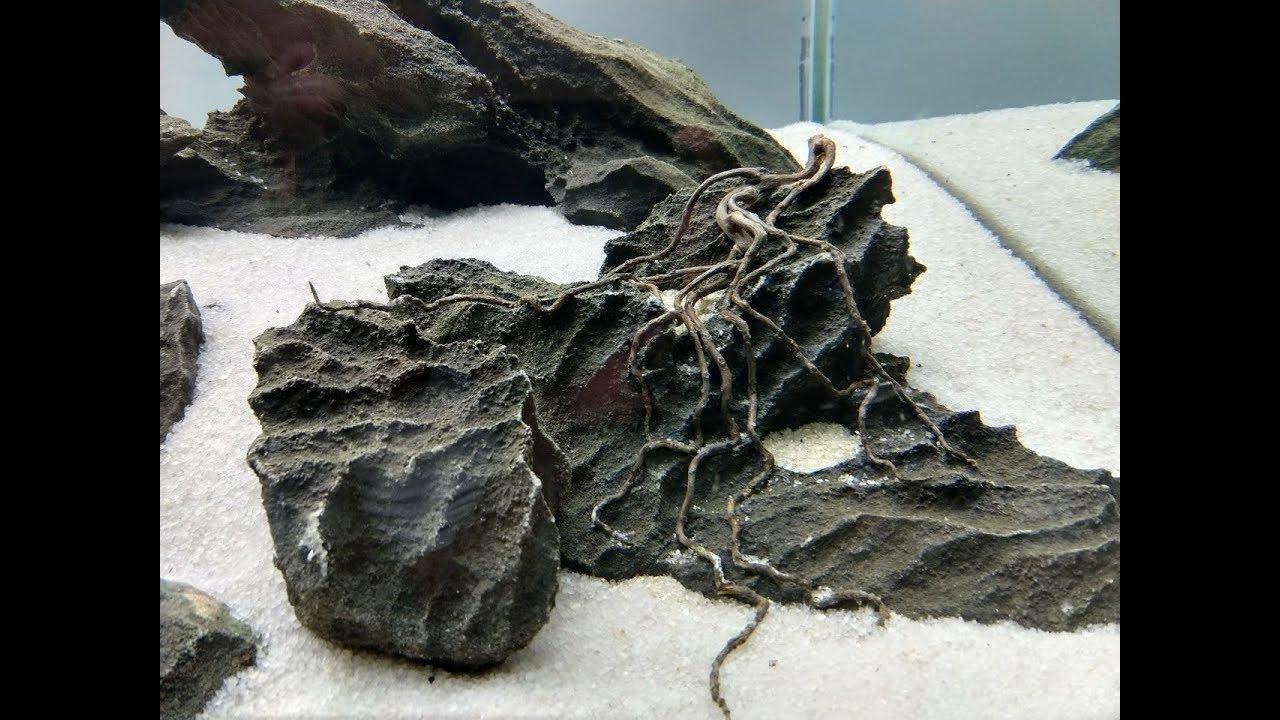 Malásia Rocks no Brasil