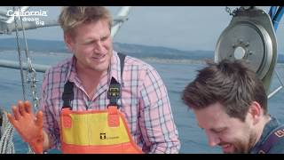 Curtis Stone in Mendocino County: Princess Seafood