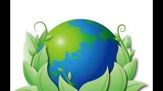 быть чистым и здоровым: как выбрать безопасное моющее средство