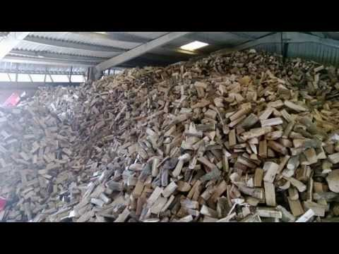 Our logs ready for delivery