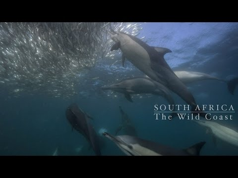 South Africa,The wild coast experience.
