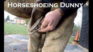 Horseshoeing Dunny