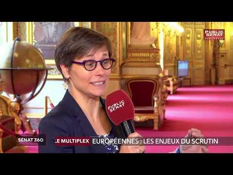Elections européennes : les enjeux du scrutin