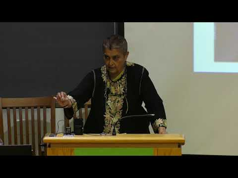 Gayatri Spivak  - The Rohingya Issue in a Global Context