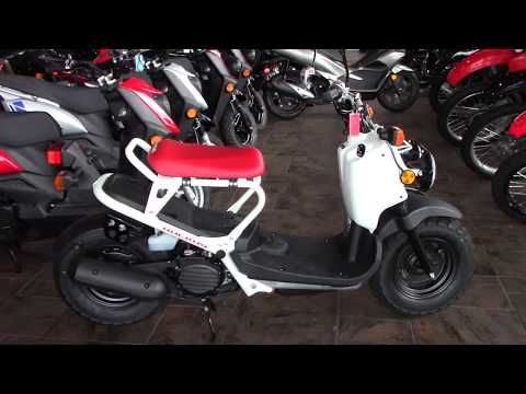2018 Honda Ruckus - New Scooter For Sale - Medina, Ohio