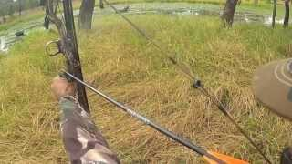 Bow Arrow Hunting Hog Hunting Video Boar Hunting 2013 Part 1 of 4  Pig Andysfishing EP.48
