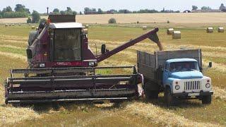 В деревне на уборке пшеницы КЗС 7 и SAMPO 3085