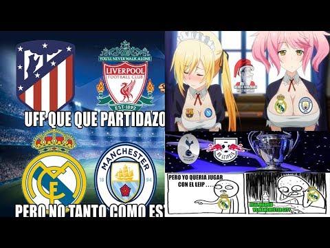 Chelsea Fc Net Forum