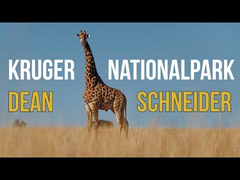 Kruger Nationalpark with