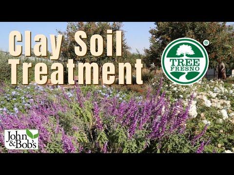 Clay Soil Treatment   Tree Fresno Demonstration Garden (No Tilling!)