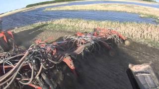 A day seeding canola Saskatchewan `13