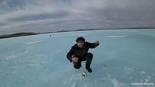 уловистая снасть для рыбалки на карася весной со льда