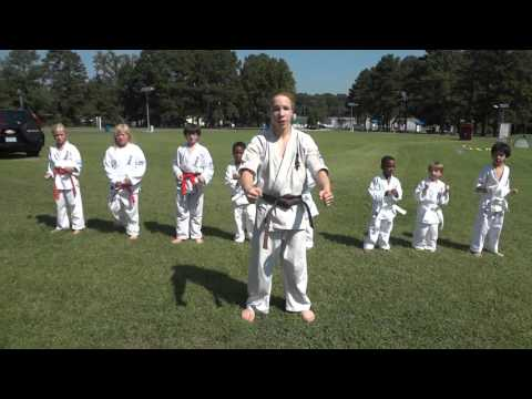 Halifax Community College (KKNC Kyokushin Demonstration) #4