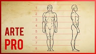 Como dibujar el cuerpo humano - Proporciones