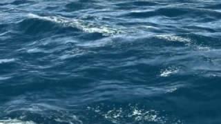 3d sea-ocean waves animation
