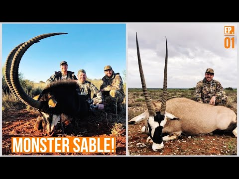 THIS PLACE IS UNREAL! MONSTER SABLE, CAPE BUFFALO, and GEMSBOK! | Hunting South Africa 2018 (Part 1)