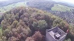 Wartenberg Ruinen Muttenz