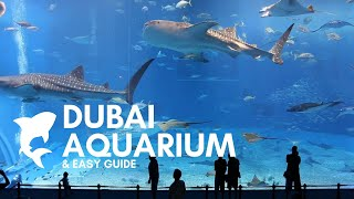 The Dubai Aquarium   How To Buy Tickets Online!
