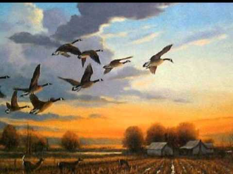 David Ison performs The Wild Geese by Mary Oliver