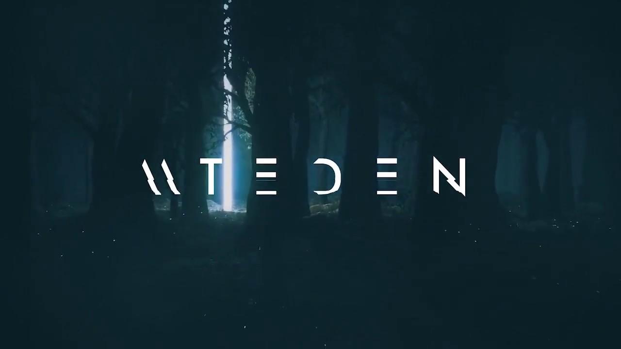 Mt Eden - Lion King (remix)