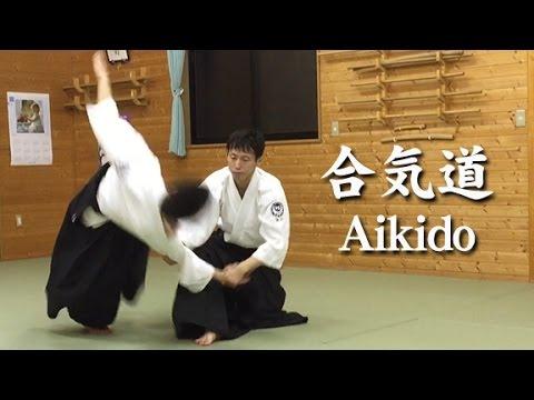 合気道‐流れる連続技③ Aikido Techniques