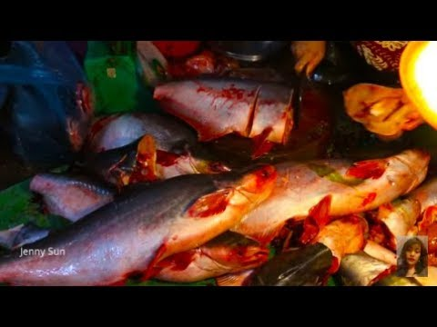 Street Food Tour - Fishes Market In Phnom Penh City - Amazing Fishes Compilation In My Village