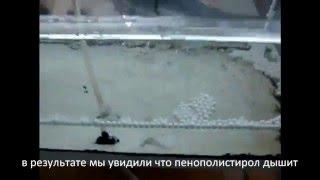Теплый Дом(Как дышит пенополистирол. Онлайн калькулятор: http://eps-opalubka.ru., 2011-07-29T14:07:38.000Z)