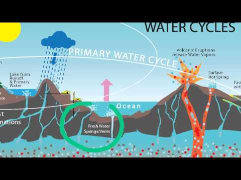 Primary Water EXPLAINED   Why We DO NOT Have a Water Shortage