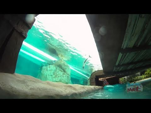 Loggerhead Lane lazy river POV at Aquatica SeaWorld Orlando